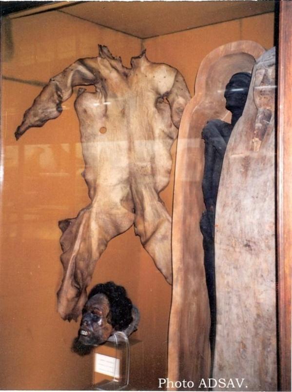Au musée de Nantes : 200 ans plus tard…