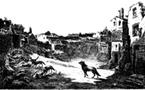 Les chiens des Colonnes infernales