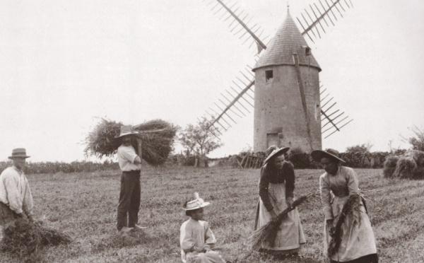 Un moulin vendéen ça déménage : le moulin du film « Vent de Galerne » est aujourd'hui au Puy du Fou.